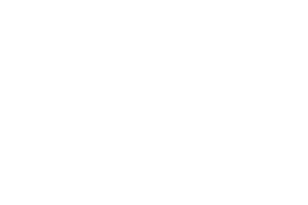 Shannon-heritage at Limerick Spring Festival
