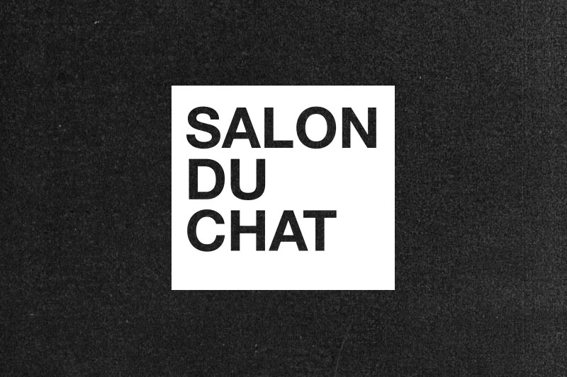 Salon Du Chat at Limerick Spring